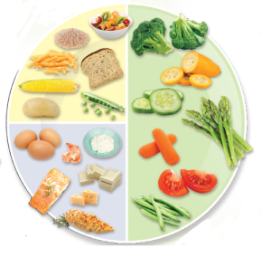 Healthy Plate from HDL on A Teacher's Best Friend